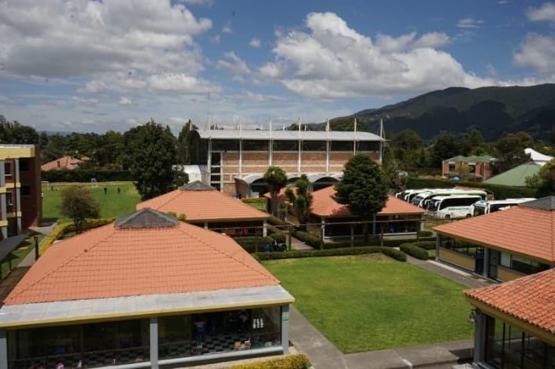 Primaria Colegio Buckingham